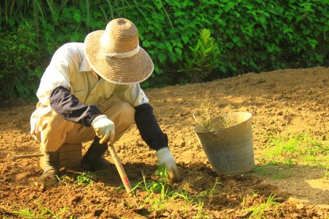 株式会社ジャストライト浪岡智がお送りする整備ブログの日本農業新聞を読んでのイメージ画像