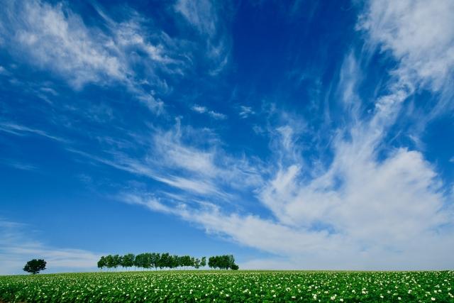 株式会社ジャストライト浪岡 智がお送りする日本農業新聞の記事を読んでのイメージ画像